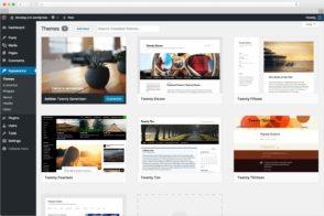 Guide: comment créer un thème WordPress, étape par étape