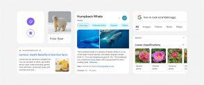 google-:-le-nouveau-design-du-moteur-de-recherche-sur-mobile